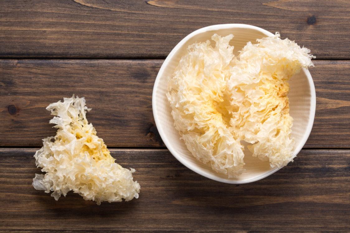 White fungus – populární houba, která se používá k podpoře zdraví a dlouhověkosti