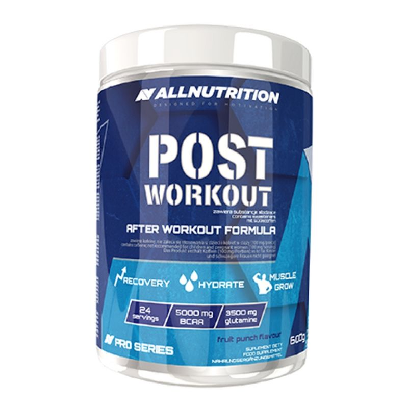 All Nutrition Post Workout 600 g - fruit punch